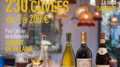 Terre de vins : Mieux vaut tard que jamais
