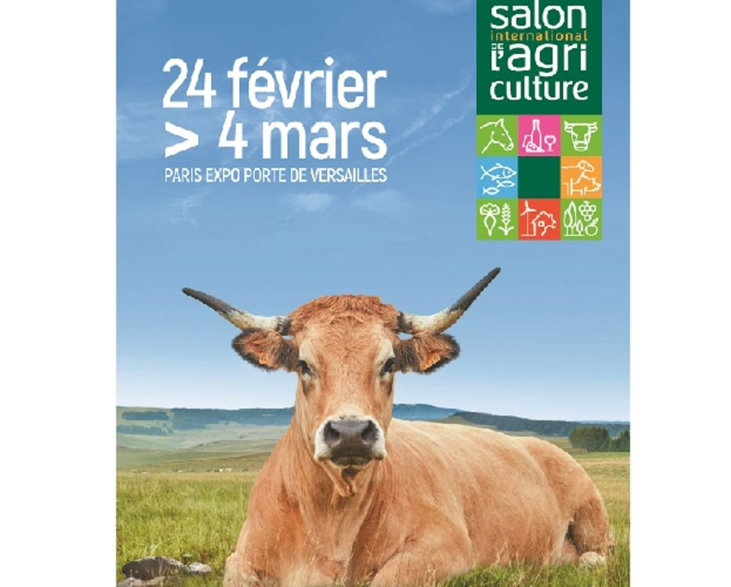 salon-agriculture-2018-une-vache-race-aubrac-pour-egerie_width1024.jpg