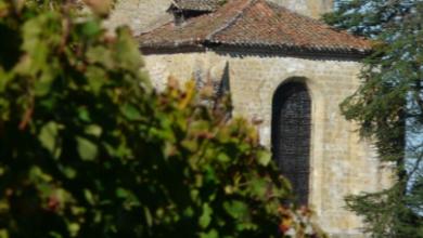 Vente solidaire des Vignerons de Plaimont