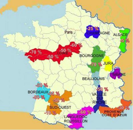 Carte dégats vignes Gel 2021